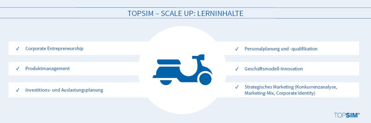 Lerninhalte TOPSIM – Scale Up