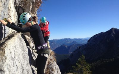 Strategic Management with TOPSIM – Going Global in the Bavarian Alps